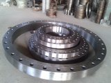 High Quality Flange Plate/Crew for Sale16 pictures & photos