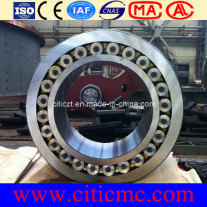 Largest Casting Bearing Rings pictures & photos