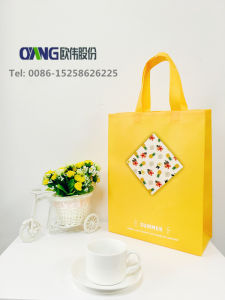 Eco Jumbo Shopping Bags Making Machine pictures & photos