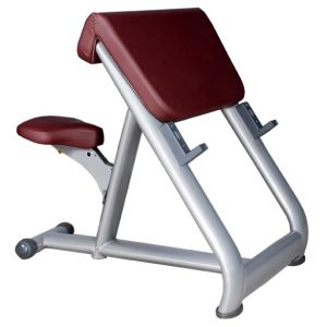 Ce and RoHS Approved Gym Bench Type Tz-6025 Seated Preacher Curl Gym Machine pictures & photos