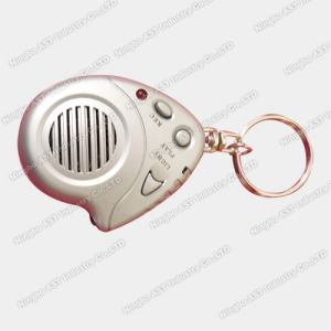 Key Chain, Voice Recorder Keychain, Recording Keychain pictures & photos