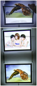 Wall Mounted LED Crystal Advertising Light Boxes with Magnetic Open pictures & photos