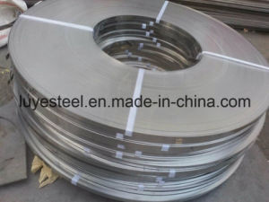 Stainless Steel Coil/Belt Super Quality 304 pictures & photos