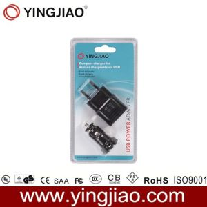 6W AC/DC USB Power Adapter for iPad pictures & photos