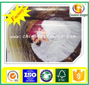 Sticker Paper of Cast Coated Paper pictures & photos