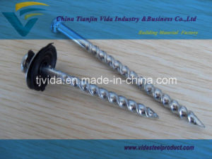 Galvanized Screw Nails with Rubber Washer pictures & photos