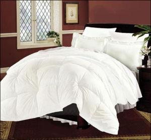 Factory Direct Sales Washable Natural Cotton Quilt & Quilt Cover