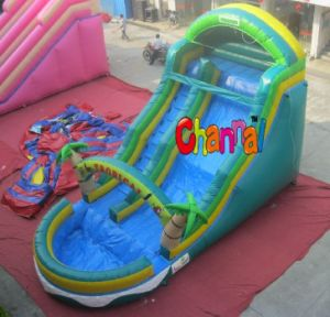 Green Inflatable Kids Water Slide with Pool for Sale (CHSL250) pictures & photos