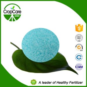 NPK Water Soluble Fertilizer (19-19-19+TE) Fertilizer Manufacturer pictures & photos
