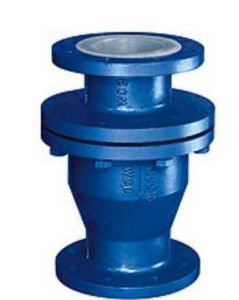 Flanged Anti Corrosive Lined Swing Type Check Valve (FEP / PFA / GXPO) pictures & photos