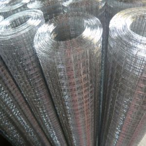 China Manufacture of Welded Wire Mesh pictures & photos
