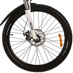 Full Suspension Electric Mountain Bike Tde05 pictures & photos