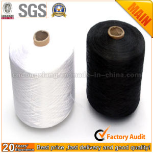 Intermingled Hollow PP Yarn, Spun Yarn Factory pictures & photos