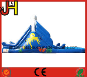 Factory Price Inflatable Slide with Pool for Sale pictures & photos