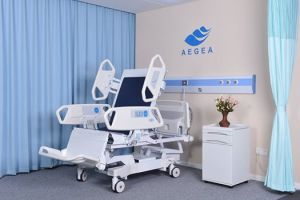 AG-Br001 8-Functions Hospital Electric ICU Bed with Embedded Operator pictures & photos