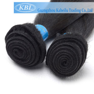 100% Brazilian Virgin Hair (KBL-BH-ST) pictures & photos