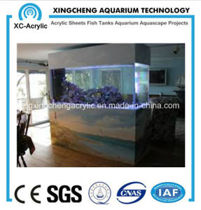 Large Family Ornamental Fish Tank pictures & photos