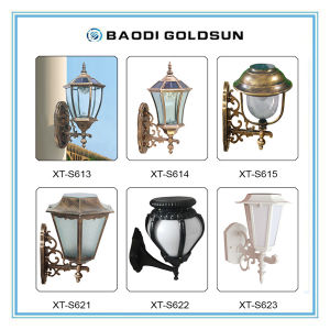 Rechargeable High Brightness Stainless Steel Solar Garden LED Light Free Maintainence pictures & photos