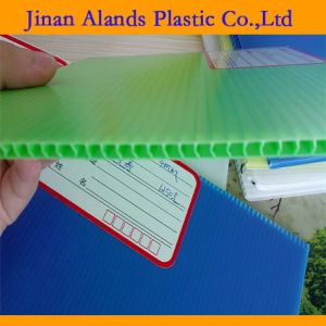 Color PP Hollow Sheet 5mm pictures & photos