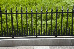 Powder Coated Garden Decoration Cast Iron Fence pictures & photos