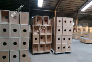 Professional Plywood for Cajon Building pictures & photos