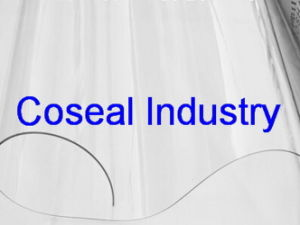 Coseal Natural Transparent Plasstic PVC Sheeting pictures & photos
