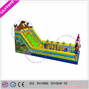 Lilytoys Giant Customize Summer Inflatable Water Slide for Kids and Adults (J-slide-10)