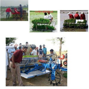 Electric Starting Rice Transplanter (2ZT-10238BG)