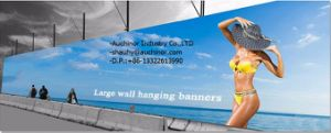 High Quality Durable Weather Resistant Outdoor Flex PVC Banner pictures & photos