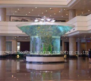 Transparent Irregular Acrylic Aquarium pictures & photos
