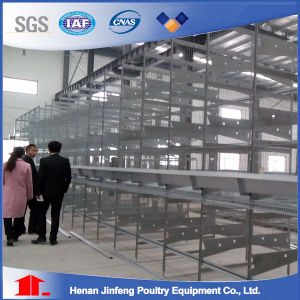 H Type Automatic Poultry Chicken Feed Equipment Cage pictures & photos