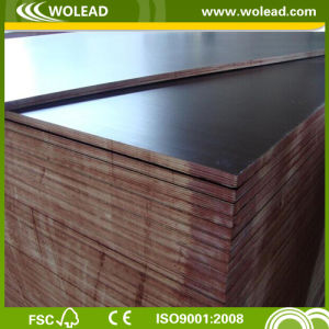 18mm Brown Film Faced Plywood for Concrete Shuttering (W15077W)