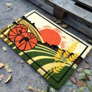 Factory Supplier Direct Beautiful Colorful Cocos Fiber Sublimation Printed Scrapper Indoor Outdoor Coir Coco Fibers Coconut Door Mats pictures & photos
