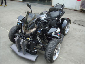250cc EEC Road Legal ATV (JY250-1A) pictures & photos