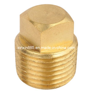 Brass Plug for Valves pictures & photos