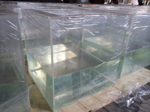 Acrilic Tank for Fish Mr349 pictures & photos