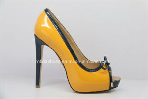 Sexy High Heel Platform Lady Shoe with Open Toe pictures & photos