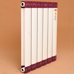 High Quality Central Heating Radiator pictures & photos