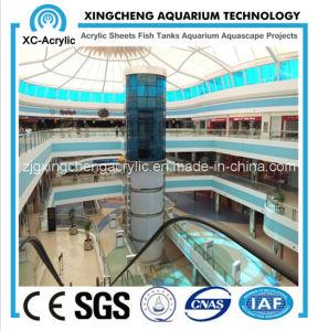 Mall Cylindrical Big Aquarium pictures & photos