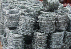 Best Quality Barbed Wire From Kdl pictures & photos