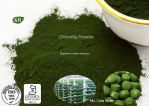 Chlorella Powder Protein 55%, Dietary Supplement Ingredients pictures & photos