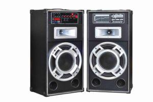 2.0 Professional Speaker 6010 pictures & photos