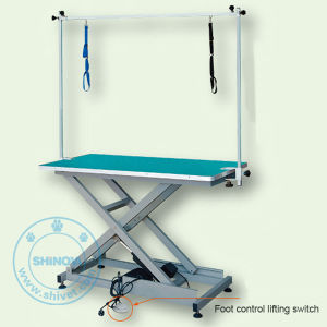 Electric Lifting Beauty Table (Foot Control) (BT-E804) pictures & photos