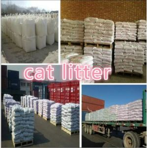 Cat Litter′s Factory Near Tianjin Port pictures & photos