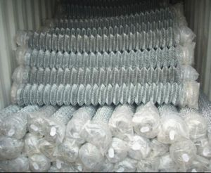 2inch Hole Galvanized Diamond Mesh Fence in Roll pictures & photos