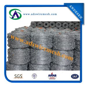 High Anti-Theft Galvanized Barbed Wire pictures & photos