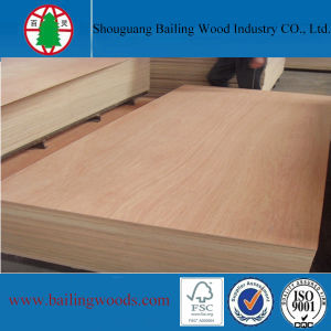 3.6mm Bintangor Commercial Plywood for Philippines Market