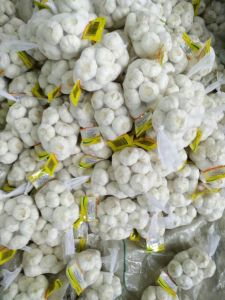 High Quality Chinese Pure White Garlic (5.0cm and up) pictures & photos
