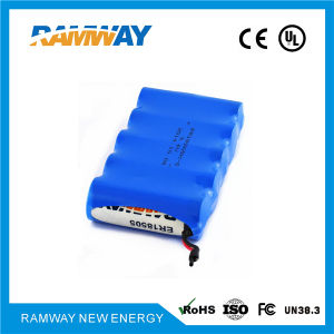 3.6V 20ah Er18505-5 Battery Packs for Bluetooth Radio Remote Entrance Guard Devices pictures & photos