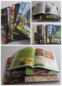 Full Color Softcover Book Printing Printing Book Paperback pictures & photos